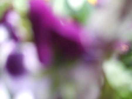 Flowers No.2-5