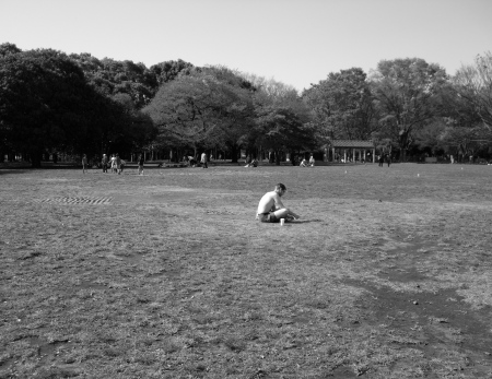 Parkscapes -6