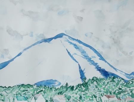 Mt. Asama No.1