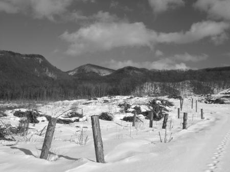 Landscape of Kitakaruizawa No.20